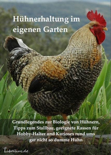 Hühnerhaltung im eigenen Garten - der Libellius-Ratgeber.