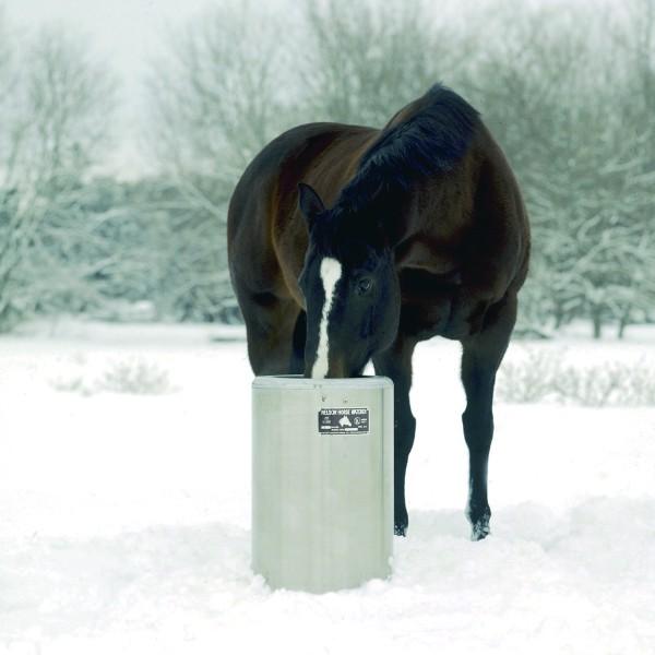 Pferdehaltung: Frostsichere Tränken für Offenstall und Weide - Libellius