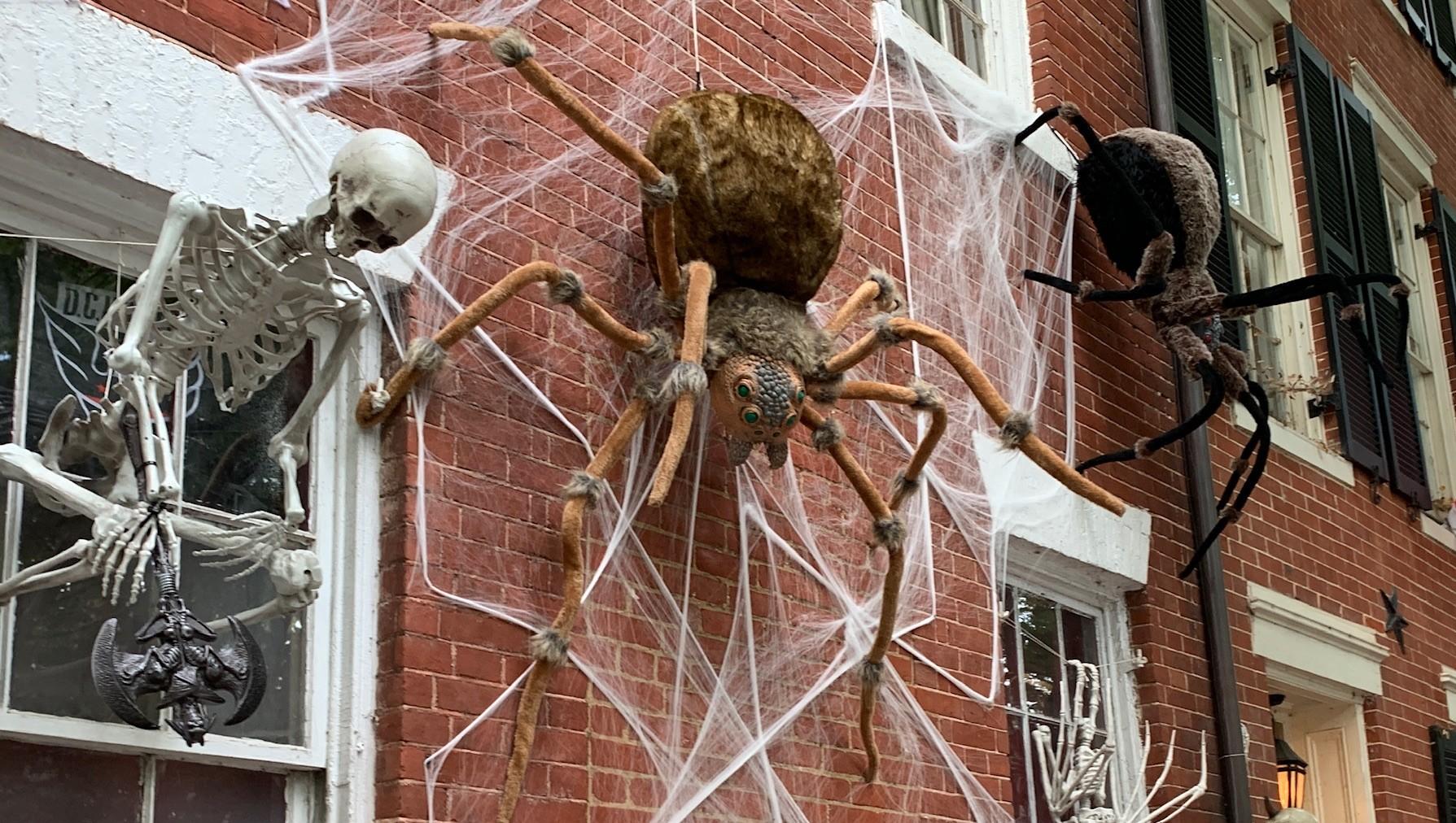 Halloween Dekoration Fur Haus Und Garten Libellius